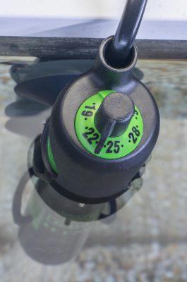 Heizstab Heizer Aquarium Temperatur die richtige Wassertemperatur