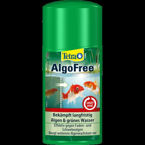 Schwebealgen f rben teichwasser gr n tetra aquaristik blog for Gartenteichpflege algen