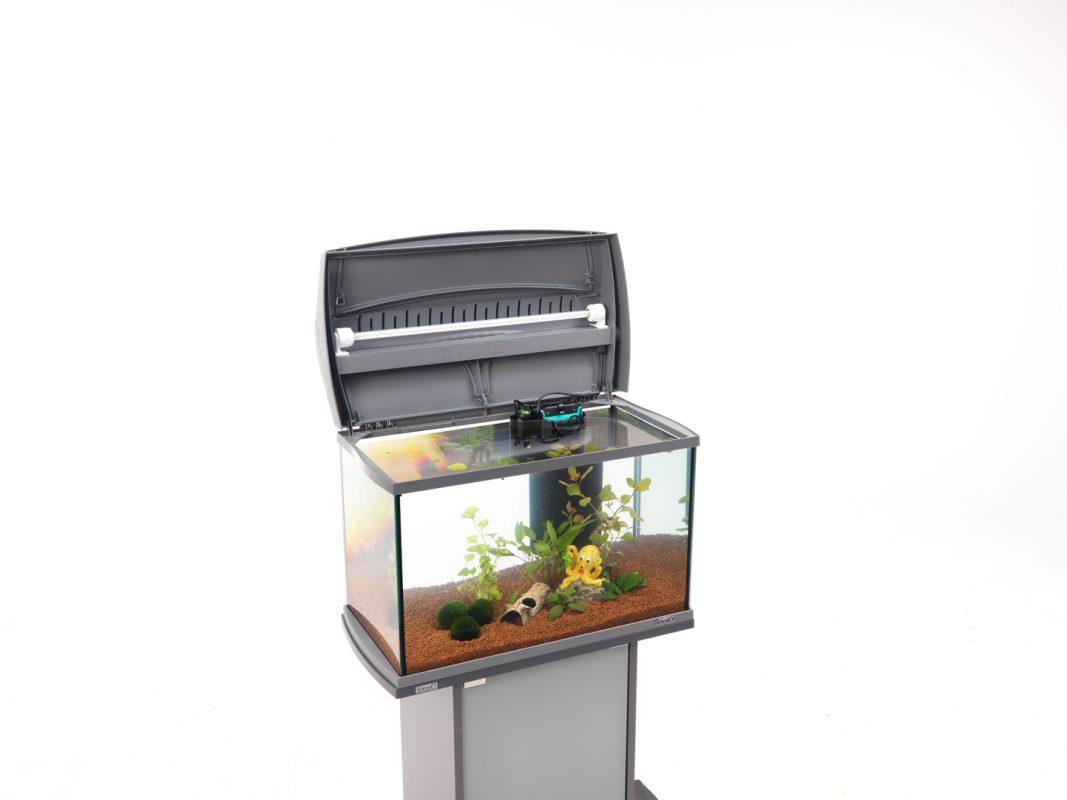 Aquarium einrichten Aquarium einrichten leicht gemacht Schritt für Schritt Anleitung Biologische Einfahrphase öklogisches Gleichgewicht