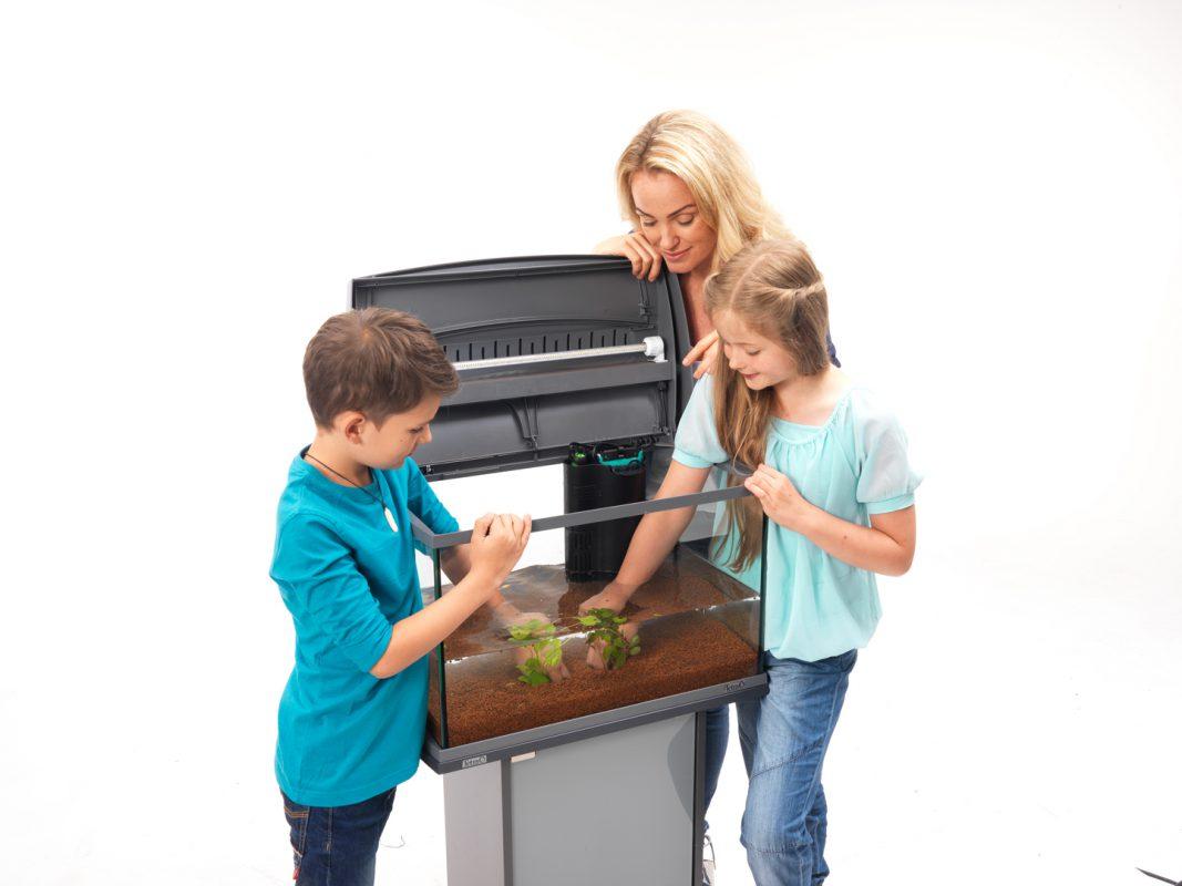 Aquarium einrichten Aquarium einrichten leicht gemacht Schritt für Schritt Anleitung Pflanzen