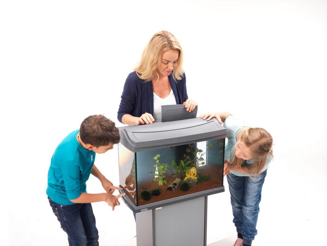 Aquarium einrichten Aquarium einrichten leicht gemacht Schritt für Schritt Anleitung Technik einschalten