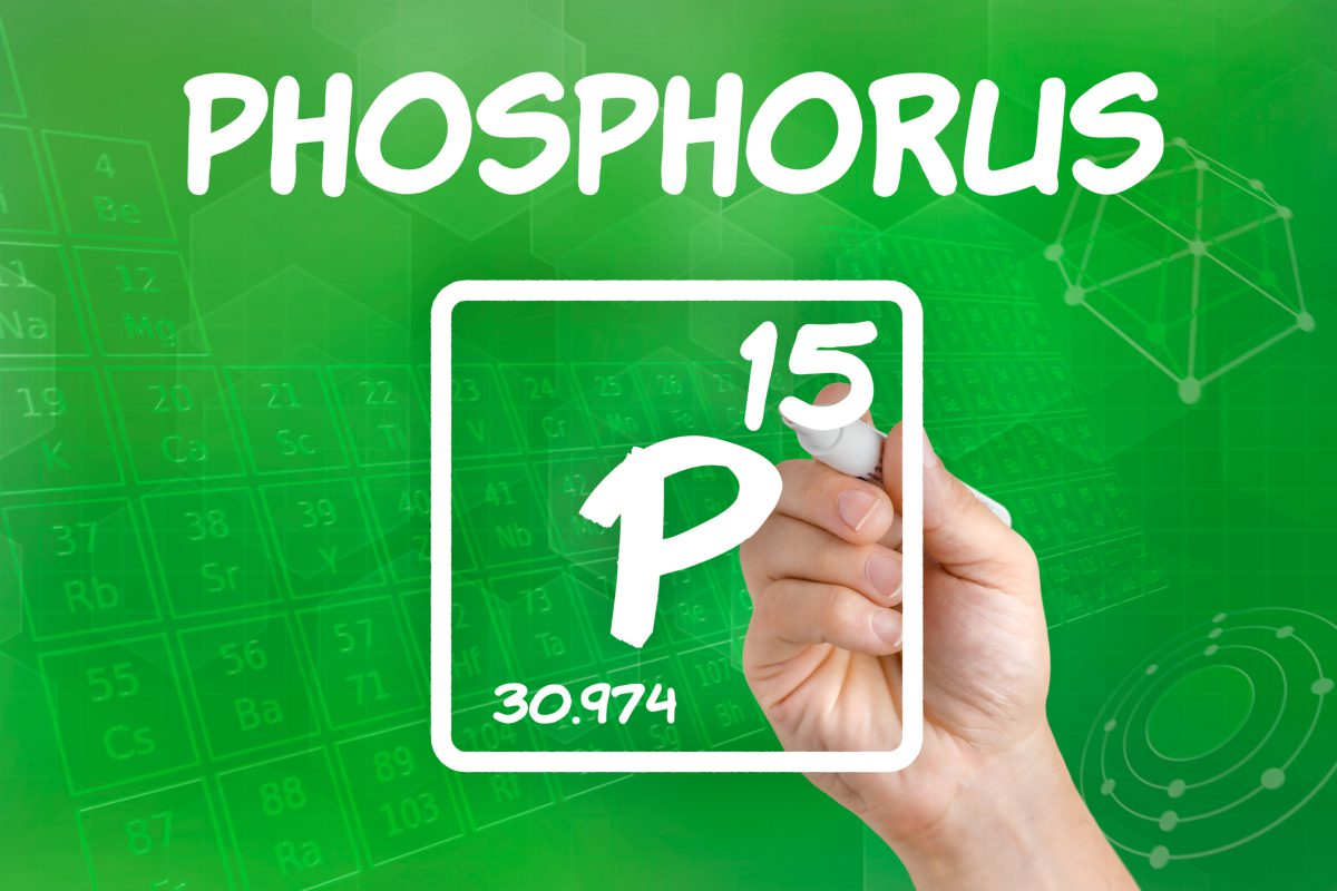 Dealing with phosphorus in your aquarium and pond