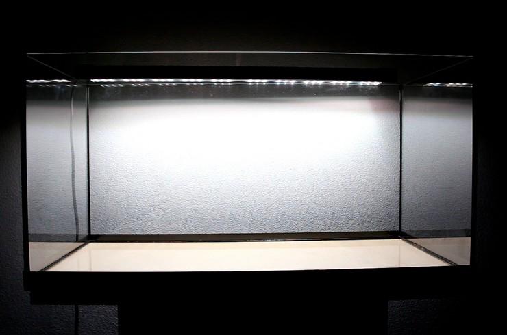 Аквариум Tetra Starter Line объемом 54 л со светильником Tetronic LED ProLine
