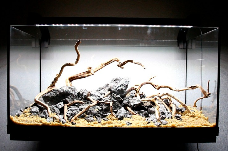 На переднем плане аквариума используется промытый песок