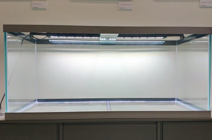 Аквариум объемом 200 литров с установленным светильником