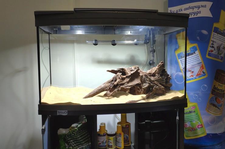 При создании аквариума был выбран диагональный тип оформления