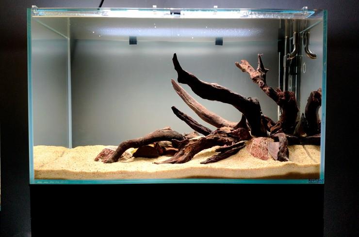 Оформление аквариума завершено