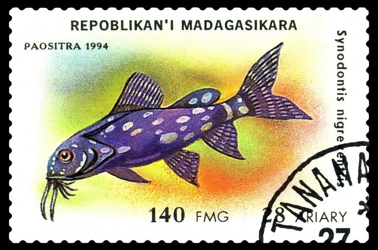 Марка с изображением синодонтиса. Республика Мадагаскар, 1994 год