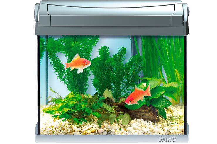 Аквариум Tetra AquaArt LED