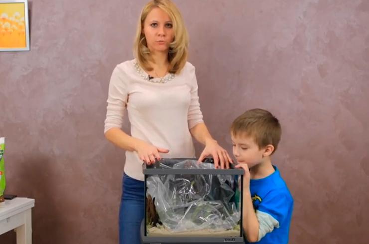 Кусок полиэтилена, уложенный в аквариум, не позволит воде при заполнении размыть грунт