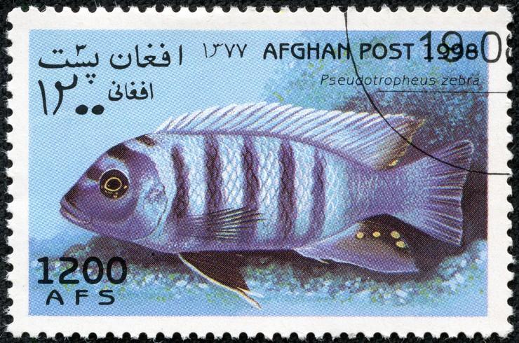 Марка с изображением псевдотрофеуса, 1998 год