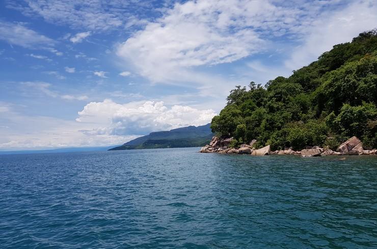 Скалистая прибрежная полоса озера Танганьика – типичное местообитание юлидохромисов