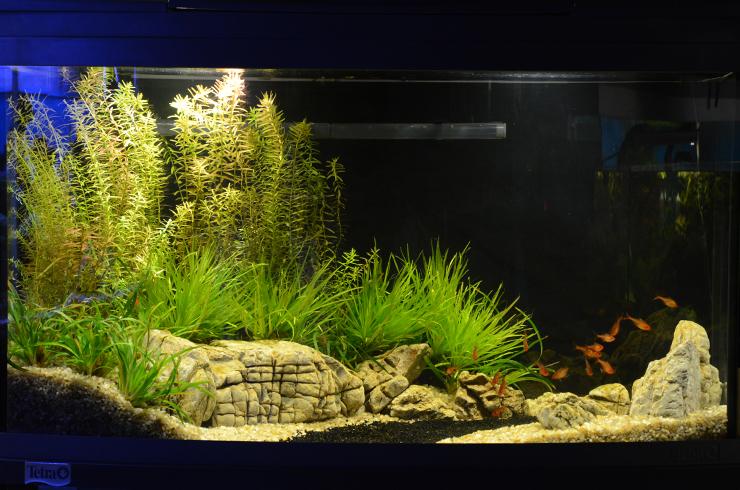 Аквариум 100 литров «Лесистый берег»