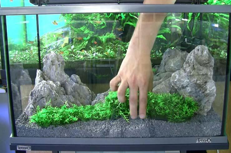 Декорируем аквариум искуствеными  растениями