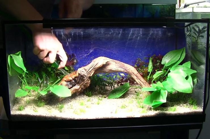Добавляем воду в аквариум