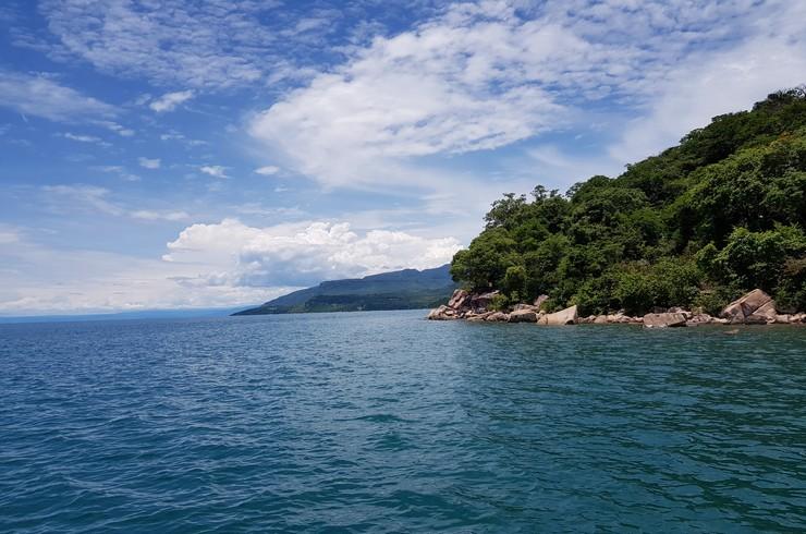 Озеро Танганьика – единственное природное местообитание фронтозы