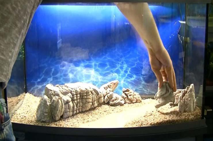 Украшаем «правый берег» натуральными камнями