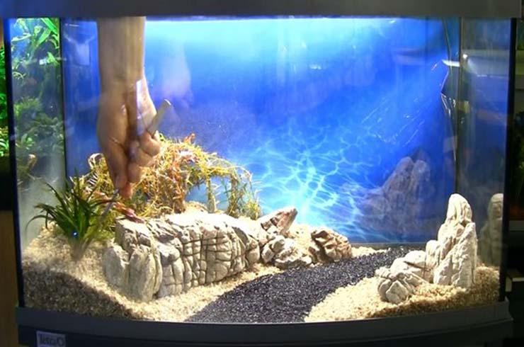 Высаживаем эриокаулон на переднем плане аквариума
