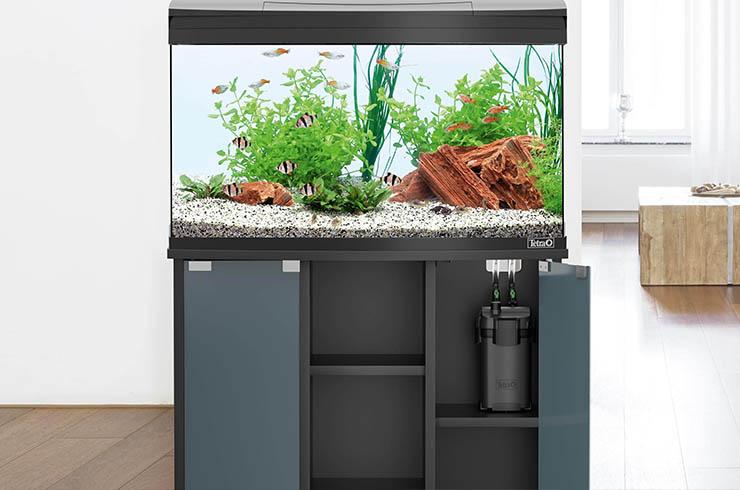 Подбор внешнего фильтра зависит от ряда характеристик аквариума
