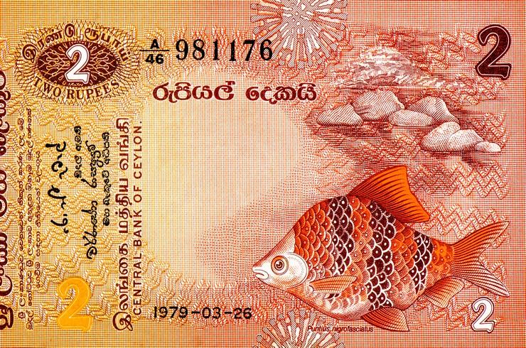 Изображение черного барбуса на банкноте номинал 2 рупии. Шри-Ланка, 1979 г.