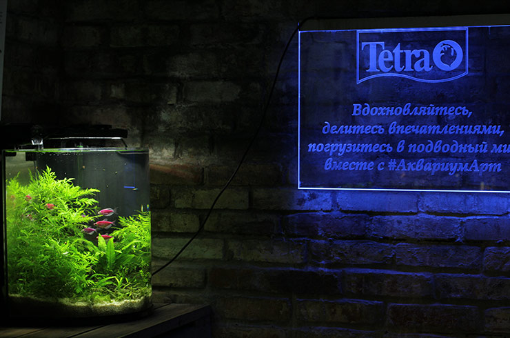 Прикоснитесь к миру живых аквариумных растений вместе с Tetra
