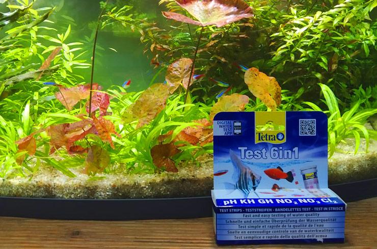 Тестовые полоски Tetra Test 6in1 позволяют быстро оценить состояние аквариума