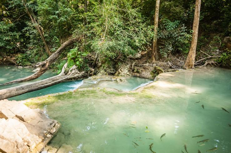 Рыбки гарра руфа на территории национального парка Эраван (Таиланд)