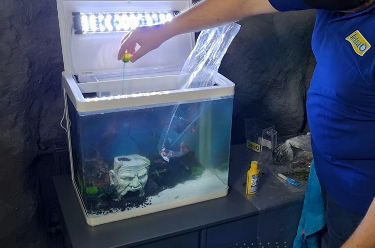 Tetra AquaSafe моментально делает водопроводную воду безопасной для рыб